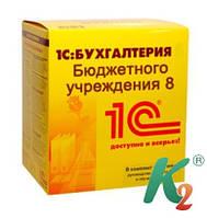 Бухгалтерия для бюджетных учреждений Украины