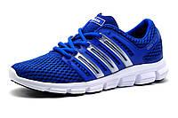 Кроссовки мужские Adidas Crazycool, синие, фото 1