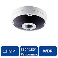 Видеокамера GeoVision GV-FER12203