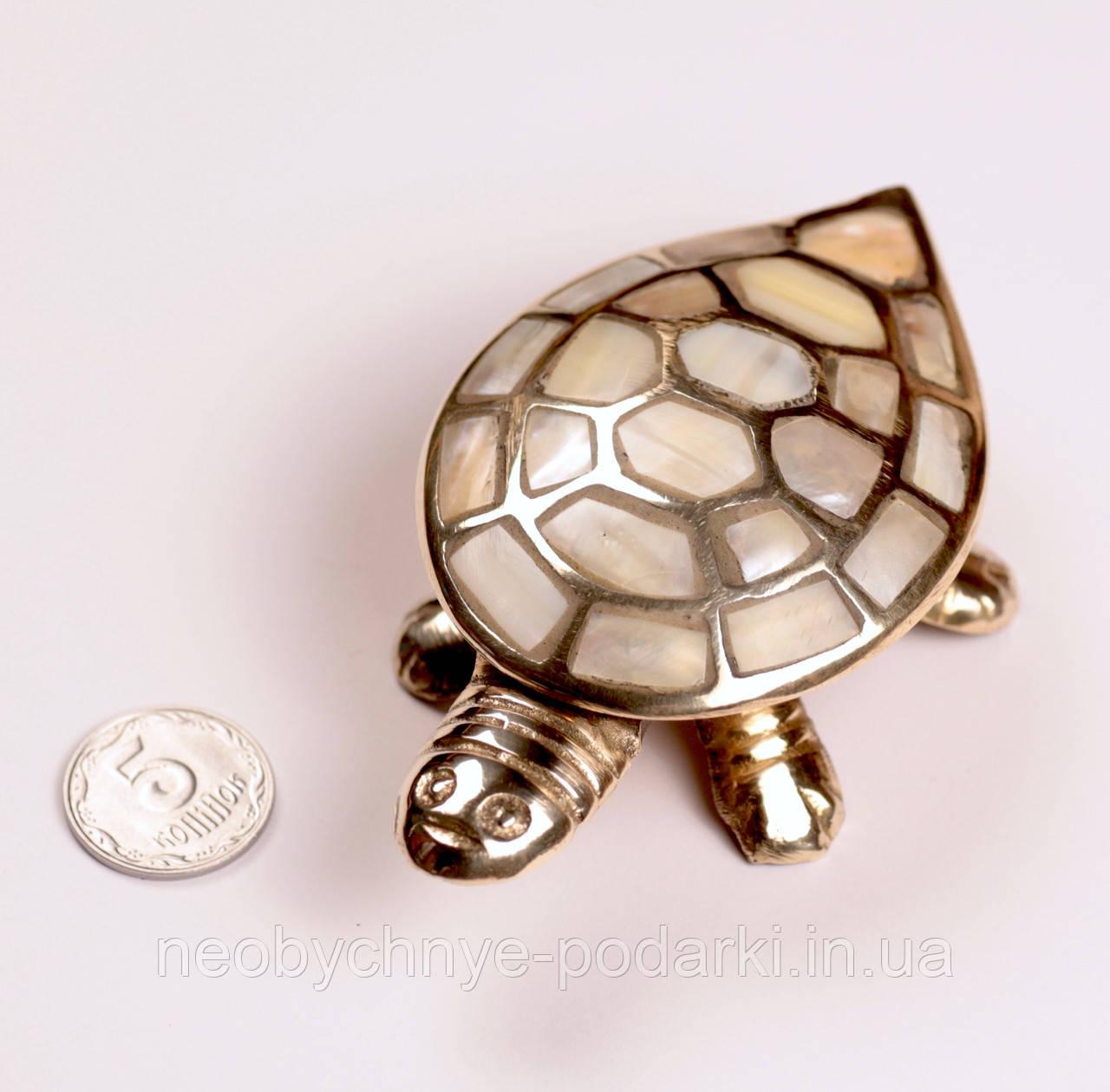 Черепаха фен шуй