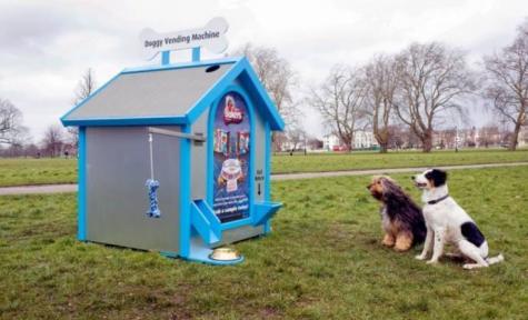 В Лондоне открыли первый собачий торговый автомат