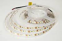 LED лента Rishang SMD2835, 120шт/м, 8.4W/m, IP33
