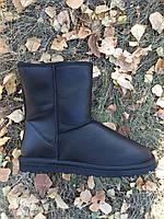 Мужские угги (UGG Mens Classic Short Leather )