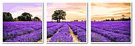 Картина-раскраска Турбо Триптих Очарование Прованса (VPT008) 50 х 150 см