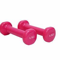 Гантели для фитнеса 0,5 кг виниловые пара