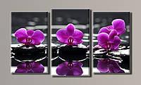 "Модульная картина на холсте из 3-х частей ""Орхидеи на камнях"""