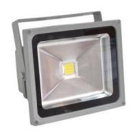 Светодиодный прожектор LL-132 1LED 30W  6500K 230V  IP65