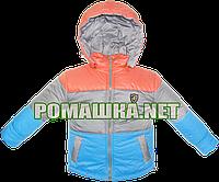 Детская весенняя, осенняя куртка р. 80 с капюшоном, подкладка 100% хлопок, внутри холлофайбер 2998 Голубой