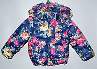 Демисезонная курточка для девочки 2-4 года Habow синяя