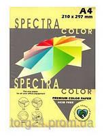 Бумага цветная М-Стандарт A4 пастельная желтая IT160  100листов 163168
