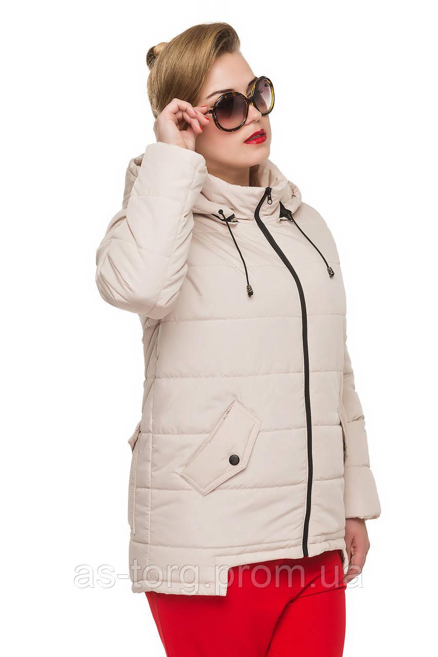 Купить курточку женскую