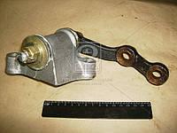 Рычаг маятниковый ВАЗ 2101 (производитель АвтоВАЗ) 21010-300308000