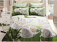 Arya Комплект постельного белья семейный сатин 3D White tulip