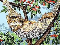 Картины по номерам 30×40 см. Котенок в гамаке