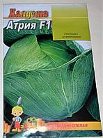 Семена Капуста Атрия F1