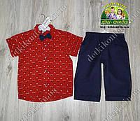 Нарядный костюм для мальчика: красная рубашка с бабочкой и шорты