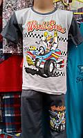 Детская пижама для мальчика 0040штаны