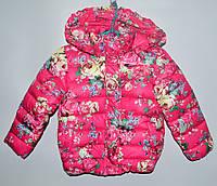 Демисезонна  курточка для  дівчаток 2-4 роки  Habow рожева