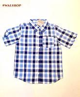 Рубашка для мальчика сине-голубая короткий рукав Крэйзи 8 Сraz8 3т,4т,5т