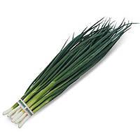ВУЛКАН - семена лука на перо 100 грамм, Kitano Seeds