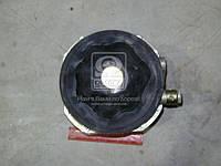Энергоаккумулятор пружинный ЗИЛ 5301,3250 (производитель РААЗ) 25-3519160