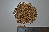Свекла кормовая Урсус Поли, 1 кг