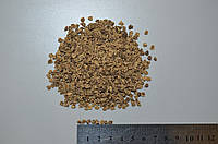 Семена свеклы кормовой Центаур Поли, 1 кг