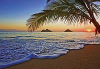 Фотообои флизелиновые Восход в Тихом океане 366*254 Код 955