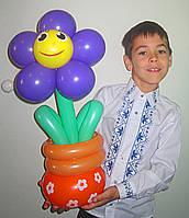 Ромашка в горшочке из шариков с улыбкой  на 8 марта, на День рождения
