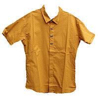 Детская рубашка на мальчика короткий рукав, фото 1