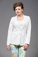 Женский повседневный удлиненный пиджак от производителя   Разные цвета