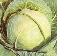 Семена капусты белокочанной Белоснежка, 10г на развес из профессиональной упаковки , Anseme (АНСЕМЕ), Италия