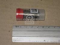 Распылитель форсунки Opel Kadett E / Ascona C 1.6D 3 / 82-1 / 89 (производство Bosch ), код запчасти: 0434250137