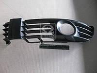Решетка в бампер левая VW Passat B5 00-05 (производство Tempest ), код запчасти: 0510609911