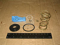 Ремкомплект головки соединительная ПАЛМ с фильтром (синий/ желтая) (производитель ПААЗ) 11.3521509-20