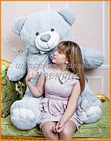 Большие плюшевые мишки Украина | Медведь 200 см