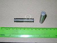 Ось рычага диска нажимного сцепления ЯМЗ 236 (производитель ЯМЗ) 236-1601113