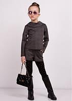 "Школьный костюм ""Гвен"" (кофта + шорты); 104-110, 116, 122, 128, 134, 140 размер"
