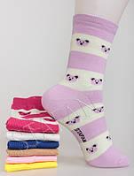 Купить носки хлопок 23028. В упаковке 12 пар, фото 1