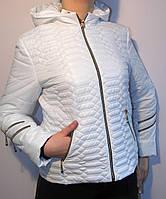 Куртка женская демисезонная на замке