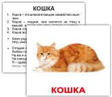 «Домашние животные с фактами» МИНИ 40 Карточки Домана
