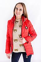 Модная демисезонная куртка от производителя