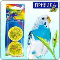 Фиеста витаминизированный корм десерт тарталетка для экзотических птиц и попугаев Чумиза 2шт