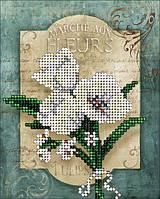 Набор для вышивания бисером. Цветы 2. КИТ 20116