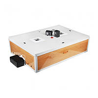 Домашний инкубатор для яиц с автоматическим переворотом Курочка Ряба ИБ-120