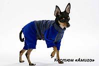 """Велюровый костюм """"Амиго""""  для собак, размеры XS, XS-2, S"""