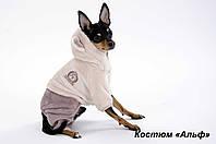 """Костюм """"Новый Альф""""  для собак, размеры XS, XS-2, S"""