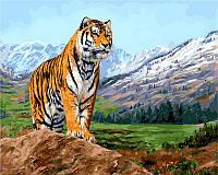 Набор для рисования Babylon Тигр на фоне заснеженных гор худ.Страйблинг Девид 40х50 VP460