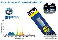 Лампа Fluval Life Spectrum T5 HO 24 Вт, 55 см - полуденный свет А1667