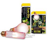 Террариумная неодимовая лампа дневного света ExoTerra Sun Glo Daylight A19 60 W (Hagen РТ 2110)